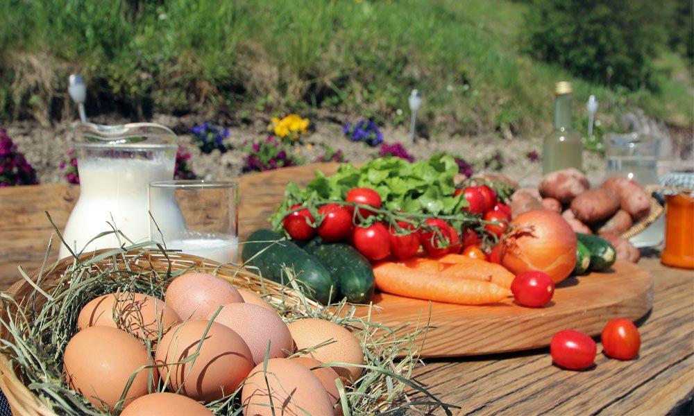 Urlaub auf dem Bauernhof – Ein einzigartiges Erlebnis