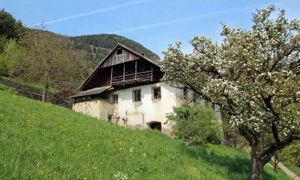 Urlaub auf dem Bauernhof am Ritten